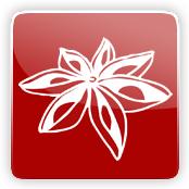 Aniseed Flavour E-Liquid Logo