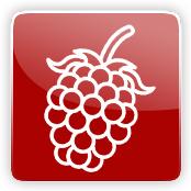 Blackberry Flavour E-Liquid Logo