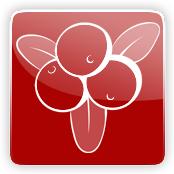 Cranberry Flavour E-Liquid Logo