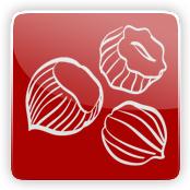Hazelnut Flavour E-Liquid Logo