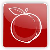 Peach Flavour E-Liquid Logo