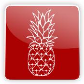 Pineapple Flavour E-Liquid Logo