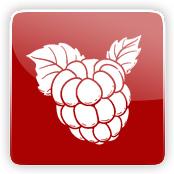 Raspberry Flavour E-Liquid Logo
