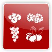 Red Berry Flavour E-Liquid Logo