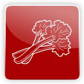 Rhubarb Flavour E-Liquid Logo